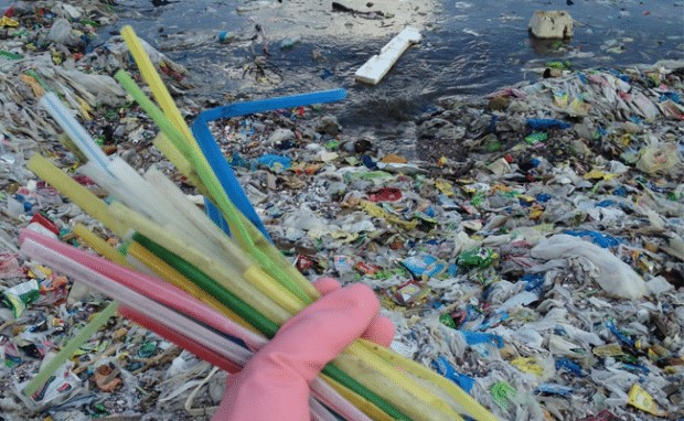 Plastic straws wasted
