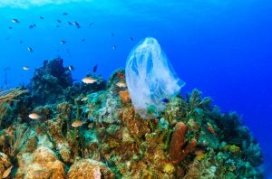 Plastic underwater